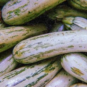 mercado punto verde buena cosecha 11