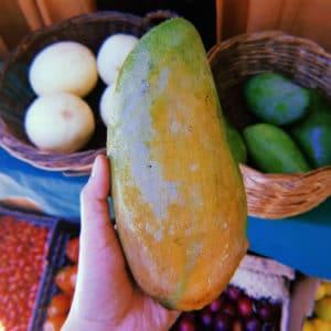 mercado punto verde buena cosecha 13